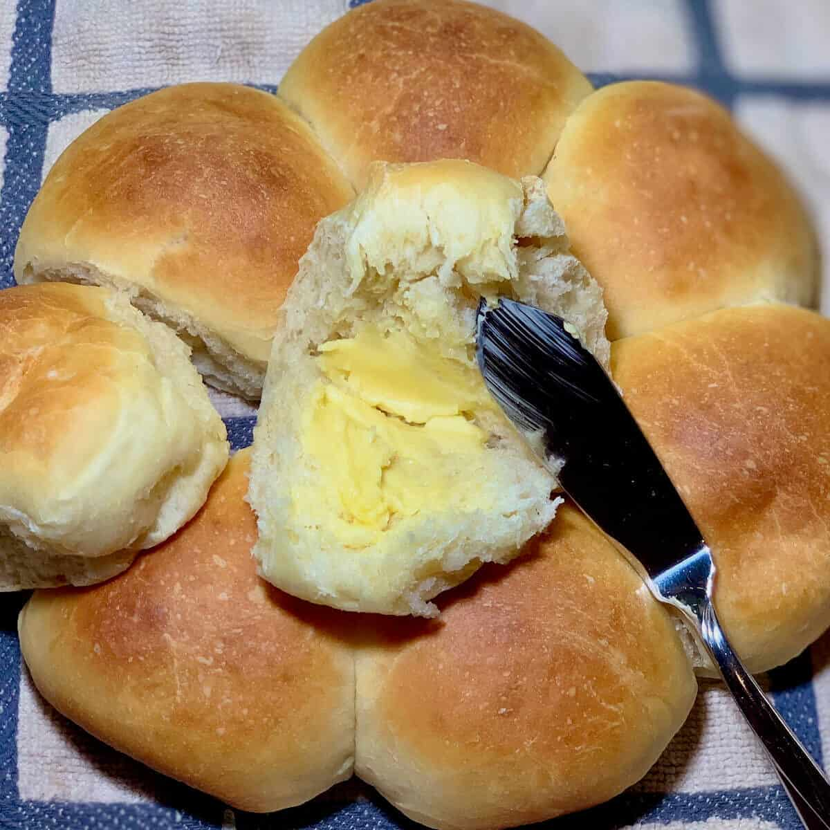 Sourdough Dinner Rolls on a checkered towel with one split open and buttered with butter knife