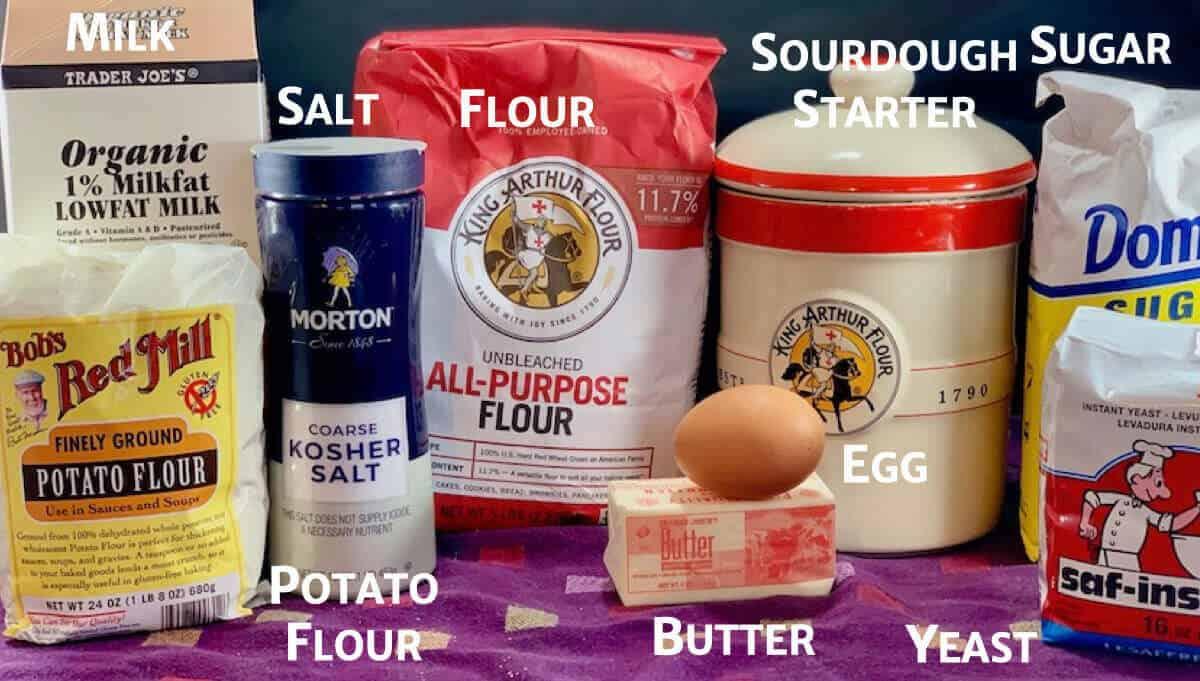 Sourdough Dinner Rolls ingredients